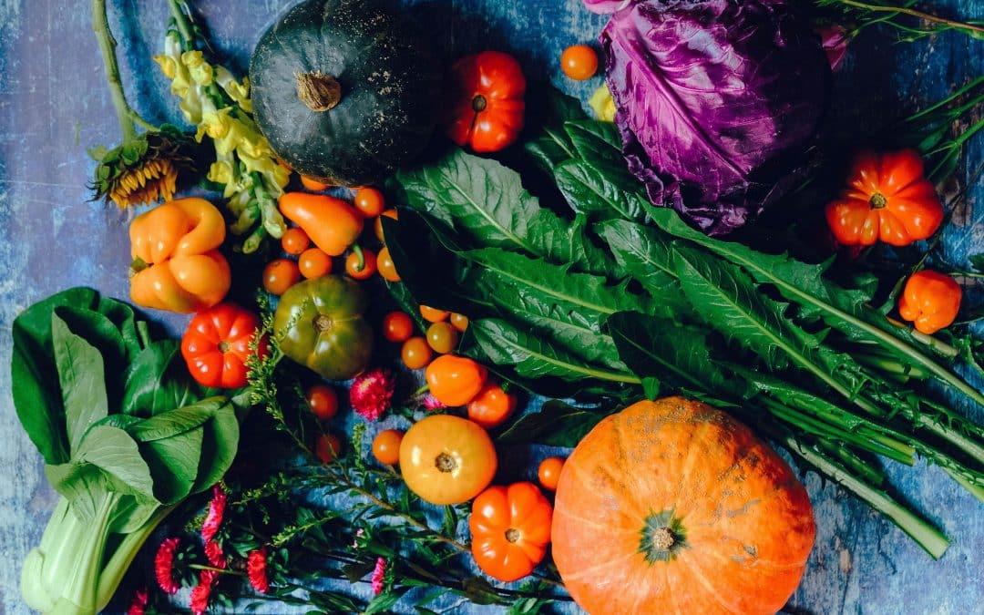Voeding en spijsvertering
